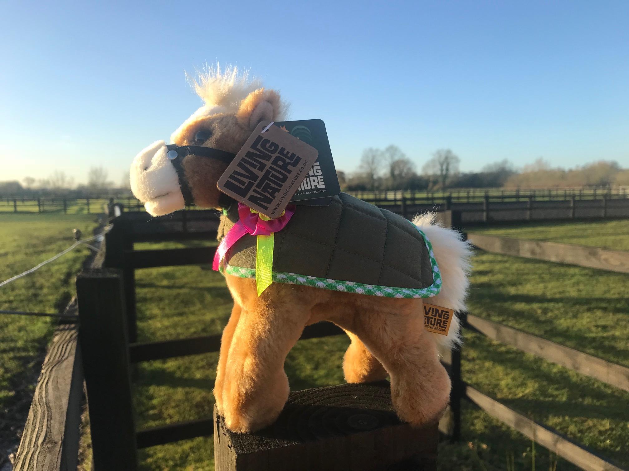 Shetland Pony Cuddly Toy